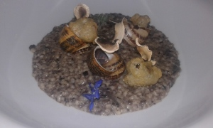 ΧΟΧΛΙΟΙ ΜΠΟΥΜΠΟΥΡΙΣΤΟΙ ΜΕ ΤΡΟΥΦΑ: Σαγανάκι με τραχανά, μανιτάρια και μαύρη τρούφα