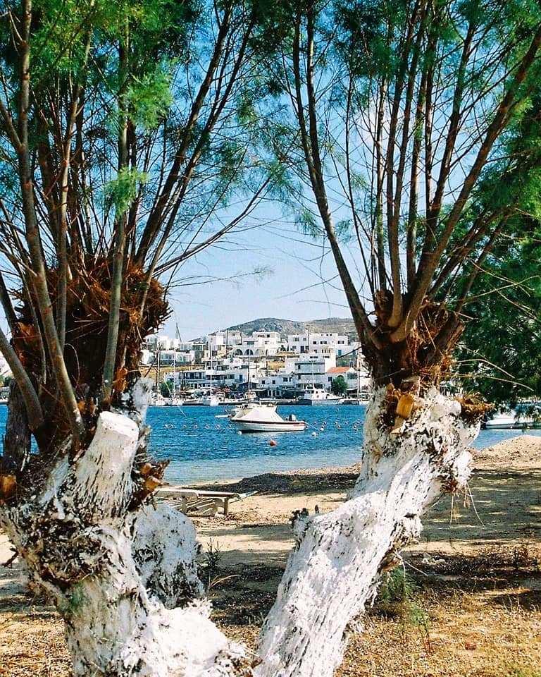 Σέριφος, το νησί που «συμπυκνώνει» ό,τι αγαπάμε στιςΚυκλάδες